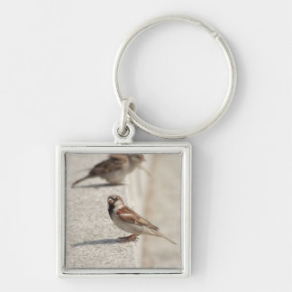 sparrows on the step Silver-Colored square keychain