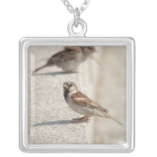sparrows on the step square pendant necklace