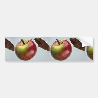 Spartan apple car bumper sticker