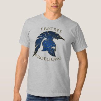 Spartan Battle Trojan Greek Warrior Blue Gold T Shirt