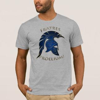Spartan Battle Trojan Greek Warrior Blue Gold T-Shirt