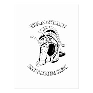 Spartan Bee Postcard