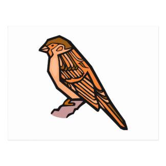 Spat Sparrow Postcard