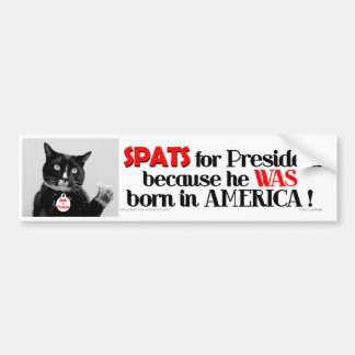 Spats the Cat for President bumper sticker