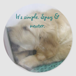Spay and Neuter Classic Round Sticker