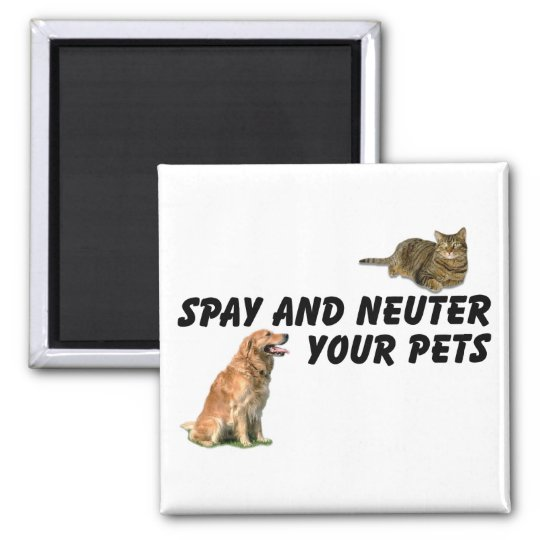 Spay and Neuter Magnet