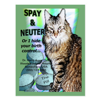 Spay and Neuter (Personalize) Postcard