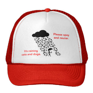 """""""Spay and Neuter Pets"""" Hat"""