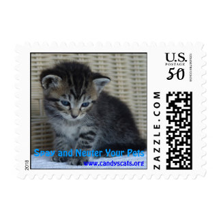 Spay and Neuter Your Pets 3 Postage Stamp