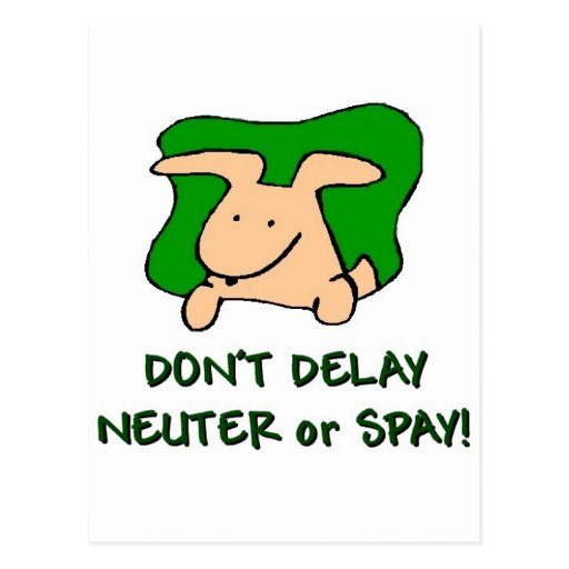 spay and neuter your pets post cards
