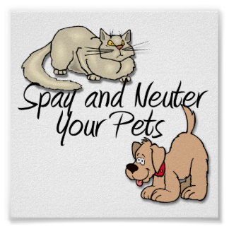 Spay and Neuter Your Pets Poster