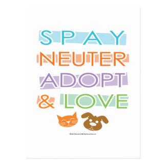 Spay el neutro adoptan amor postales