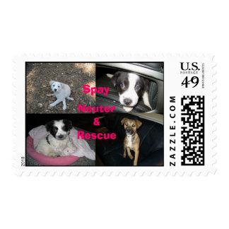 Spay el rescate neutral sellos postales