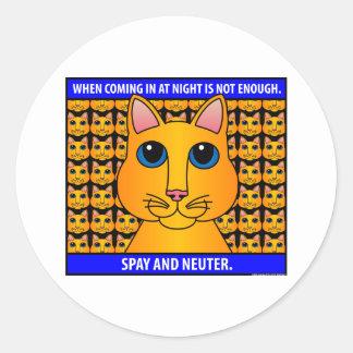 Spay Neuter1C Round Stickers