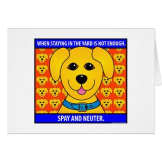 Spay Neuter1D Card