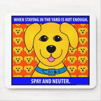 Spay Neuter1D Mouse Pad