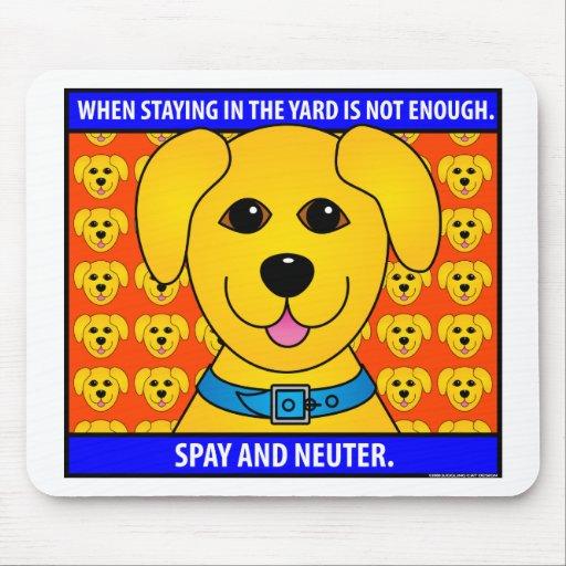Spay Neuter1D Tapetes De Ratones