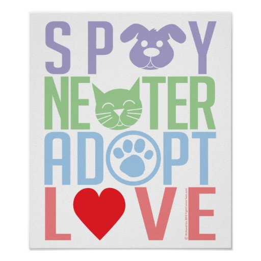 Spay Neuter Adopt Love 2 Poster