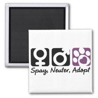 Spay, Neuter, Adopt Magnet