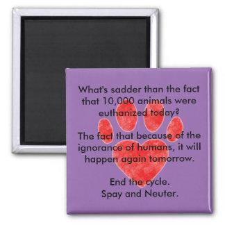 Spay & Neuter Pawprint Magnet