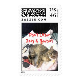 Spay & Neuter Postage