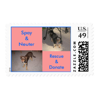 Spay Neuter Rescue Donate 2 Postage Stamps