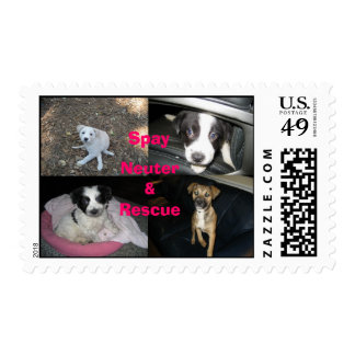 Spay Neuter Rescue Postage