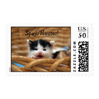 Spay/Neuter Stamps