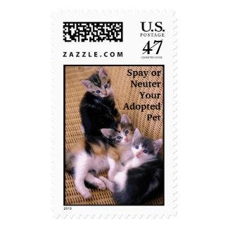 Spay o neutralice a su mascota adoptado timbre postal