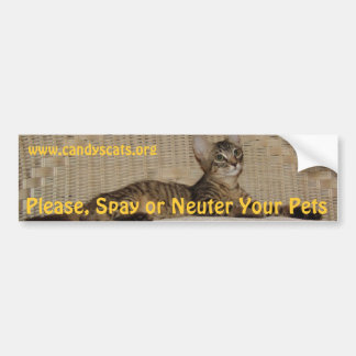 Spay or Neuter Your Pets Bumper Sticker Car Bumper Sticker
