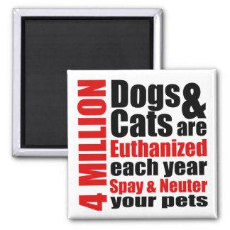Spay y neutralice a sus mascotas imán de frigorífico