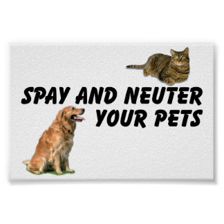 Spay y neutralice póster