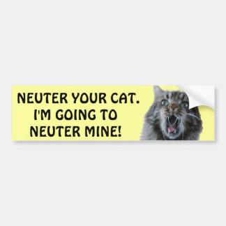 Spay y neutralice su gato. Gatito chocado Pegatina Para Auto