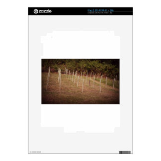 Spaymart Memorial Markers Skins For iPad 2