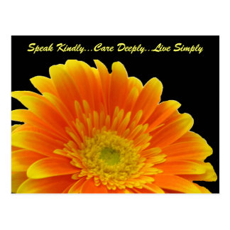 Speak Kindly Gerbera Postcard