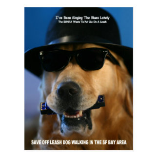 Speak Out For Off-Leash Dog Walking Senator Boxer Postcard