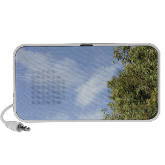 Speakers with blue sky, top of tree and clouds