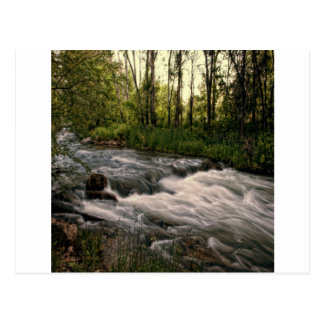 spearfish creek SD Postcard