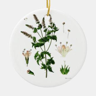 Spearmint Botanical Drawing Ceramic Ornament