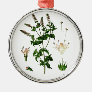 Spearmint Botanical Drawing Metal Ornament
