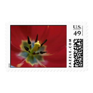 Spears And Arrows Postage