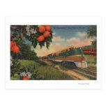 Special anaranjado del flor del tren postales