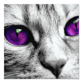 Special Cat with Purple Eyes Card
