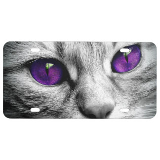 Special Cat with Purple Eyes License Plate