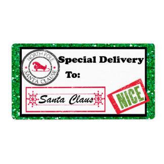 Special Delivery Christmas Package Label