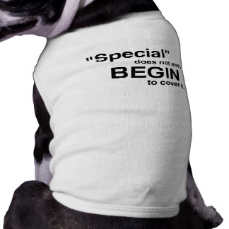 Special Does Not Even Begin To Cover It Shirt