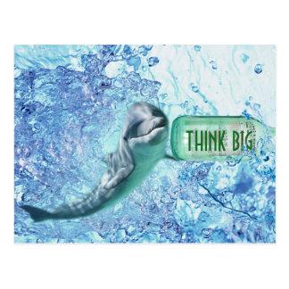 Special Dolphin Think Big Motivational Postcart Postcard