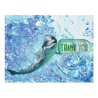 Special Dolphin Water Thank You Postcart Postcard