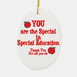 Special Education Appreciation Christmas Ornament
