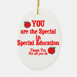 Special Education Appreciation Double-Sided Oval Ceramic Christmas Ornament